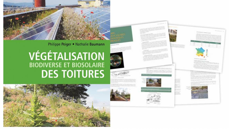 Publication : Un guide pour la végétalisation des toitures